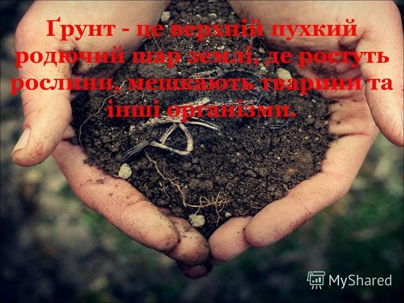 Ґрунт - це верхній пухкий родючий шар землі, де ростуть рослини, мешкають тварини та інші організми.