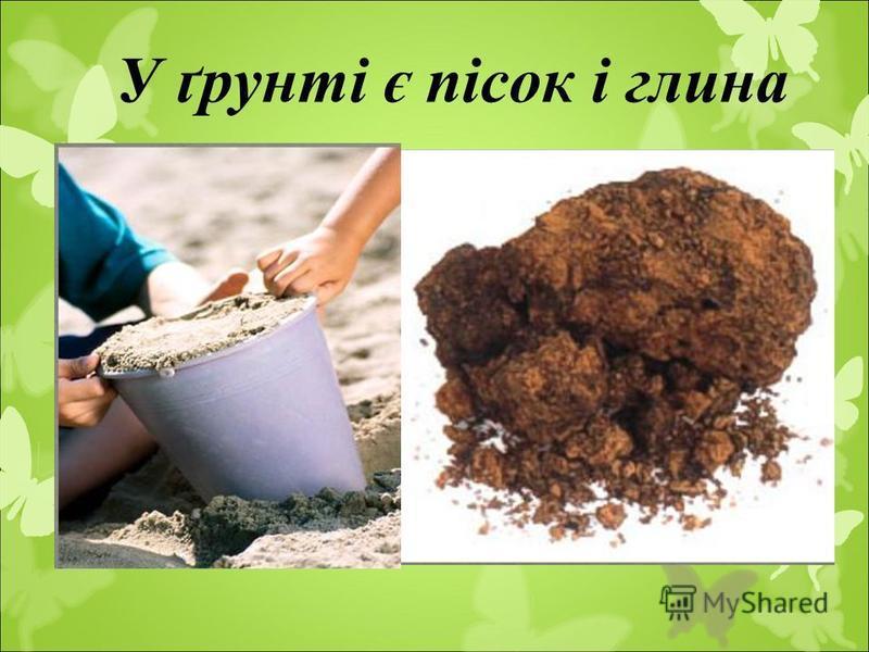 У ґрунті є пісок і глина