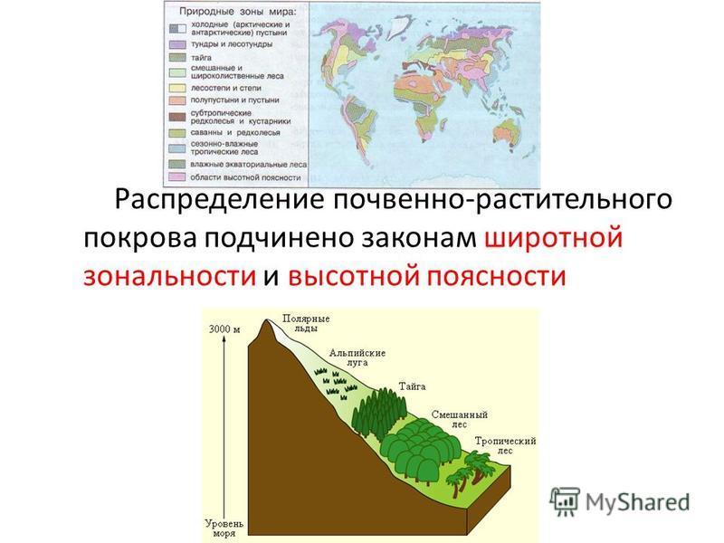 Распределение почвенно-растительного покрова подчинено законам широтной зональности и высотной поясности
