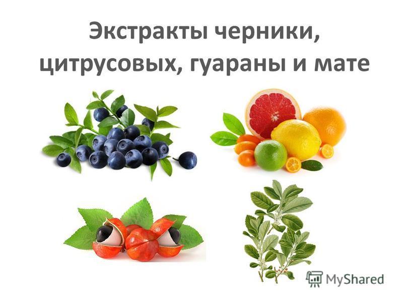 Экстракты черники, цитрусовых, гуараны и мате