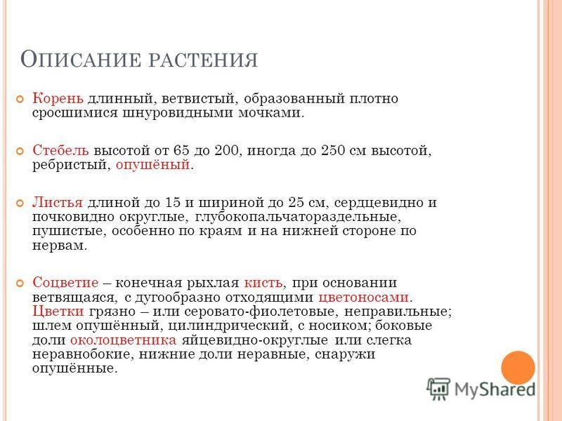 Б ОРЕЦ СЕВЕРНЫЙ Выполнила работу Ученица 3 «А» класса МОУ Молочненской СОШ Севастьянова Алиса