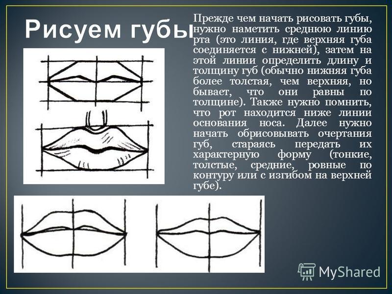 Прежде чем начать рисовать губы, нужно наметить среднюю линию рта (это линия, где верхняя губа соединяется с нижней), затем на этой линии определить длину и толщину губ (обычно нижняя губа более толстая, чем верхняя, но бывает, что они равны по толщ