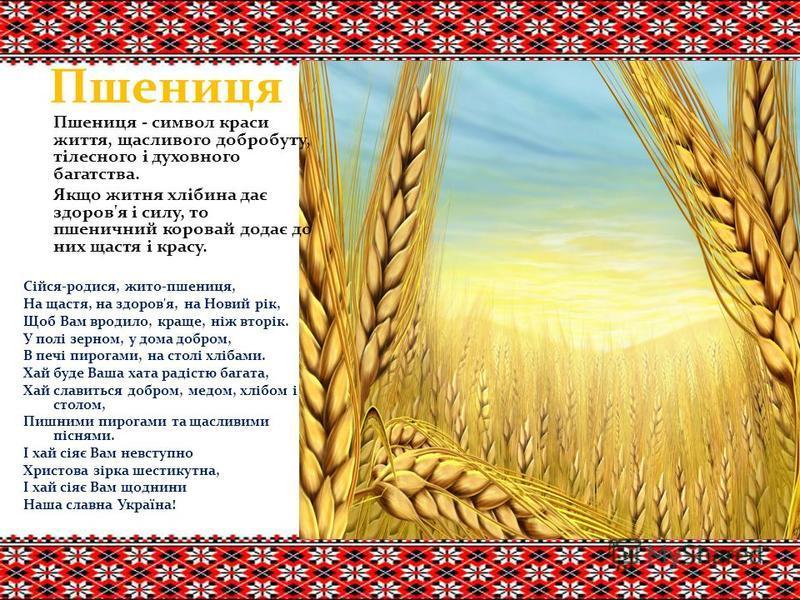 Пшениця Пшениця - символ краси життя, щасливого добробуту, тілесного і духовного багатства. Якщо житня хлібина дає здоров'я і силу, то пшеничний коровай додає до них щастя і красу. Сійся-родися, жито-пшениця, На щастя, на здоров'я, на Новий рік, Щоб