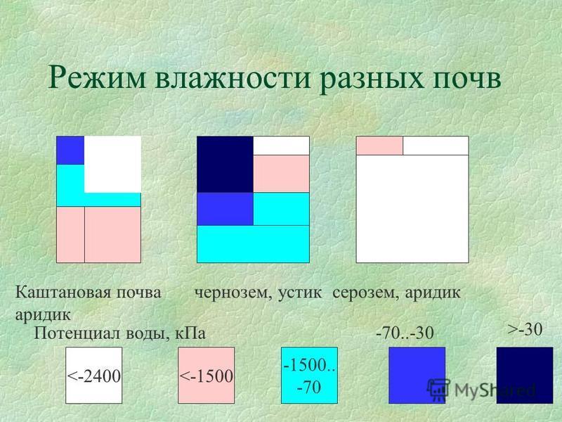 Режим влажности разных почв Каштановая почва чернозем, рррустик серозем, эвридика эвридика <-2400<-1500 -1500.. -70 -70..-30 >-30 Потенциал воды, к Па