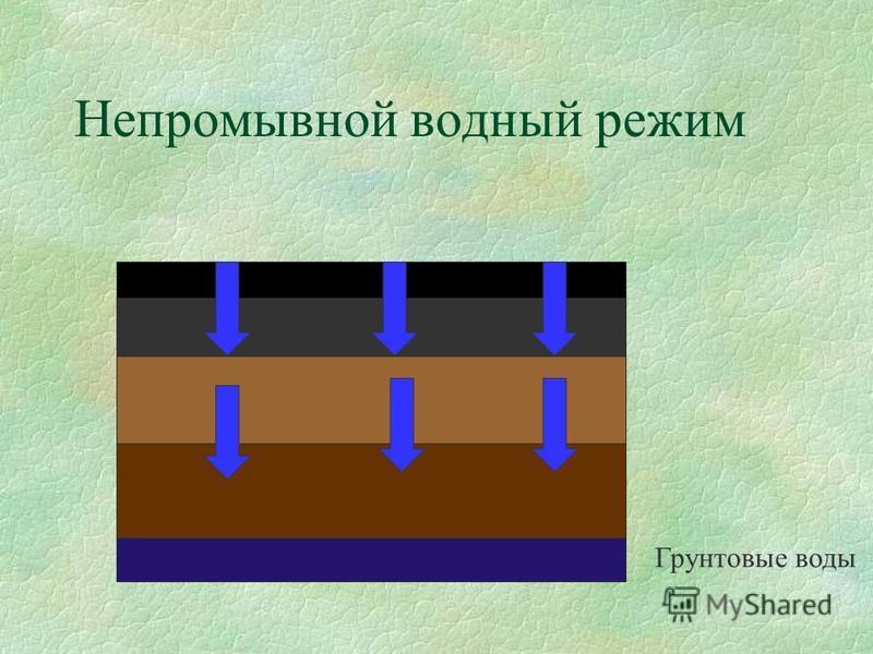 Непромывной водный режим Грунтовые воды