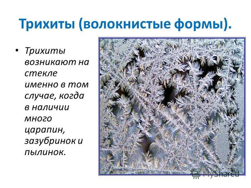 Трихиты (волокнистые формы). Трихиты возникают на стекле именно в том случае, когда в наличии много царапин, зазубринок и пылинок.