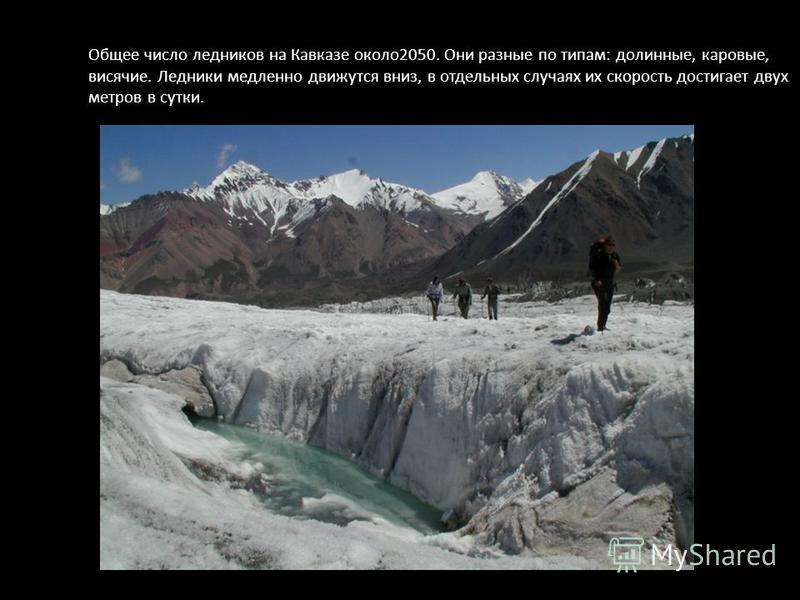 Общее число ледников на Кавказе около 2050. Они разные по типам: долинные, каровые, висячие. Ледники медленно движутся вниз, в отдельных случаях их скорость достигает двух метров в сутки.