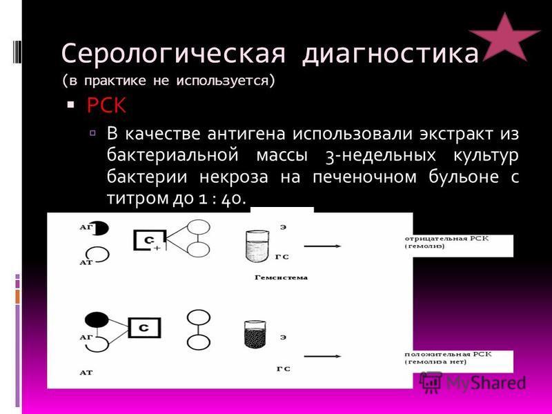 Серологическая диагностика (в практике не используется) РСК В качестве антигена использовали экстракт из бактериальной массы 3-недельных культур бактерии некроза на печеночном бульоне с титром до 1 : 40.