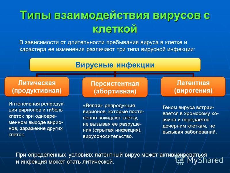 9 Типы взаимодействия вирусов с клеткой Вирусные инфекции Литическая (продуктивная) Персистентная (абортивная) Латентная (вирогения) Интенсивная репродукция вирионов и гибель клеток при одновременном выходе вирионов, заражение других клеток. «Вялая»