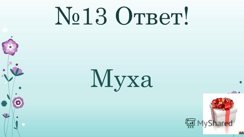13 Ответ! Муха