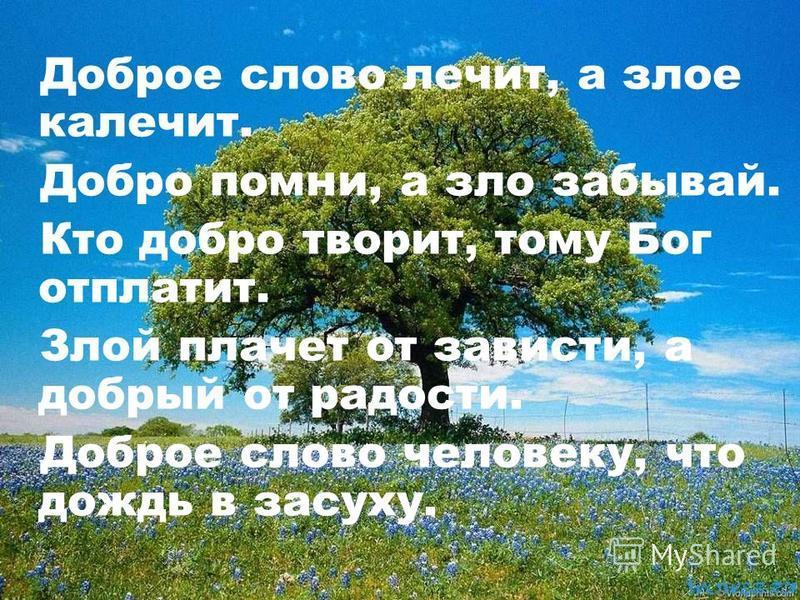 Доброе слово лечит, а злое калечит. Добро помни, а зло забывай. Кто добро творит, тому Бог отплатит. Злой плачет от зависти, а добрый от радости. Доброе слово человеку, что дождь в засуху.