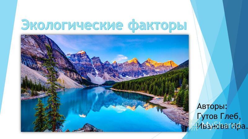 Авторы: Гутов Глеб, Иванова Ира.