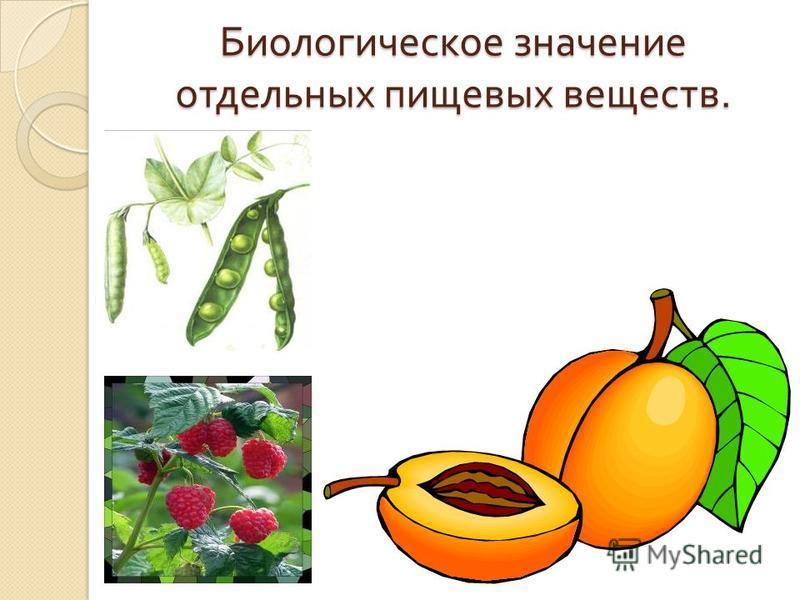 Биологическое значение отдельных пищевых веществ.