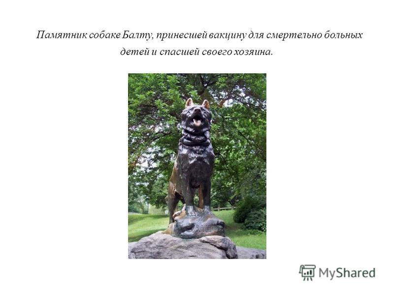 Больше всего скульптур человек установил своим самым преданным друзьям – собакам. Принято считать, что один из первых таких памятников был возведен в городе Коринфе еще в IV в. до н.э. По преданию, когда к городу ночью подкрались враги, собака по кли