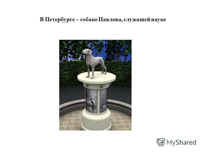 Памятник собаке Балту, принесшей вакцину для смертельно больных детей и спасшей своего хозяина.