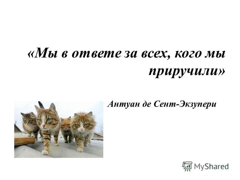 Цель мероприятия: -воспитание учеников, как активных, отзывчивых людей; -воспитание гуманных общечеловеческих качеств – забота, сострадание; -воспитание чувства ответственности за прирученных животных.