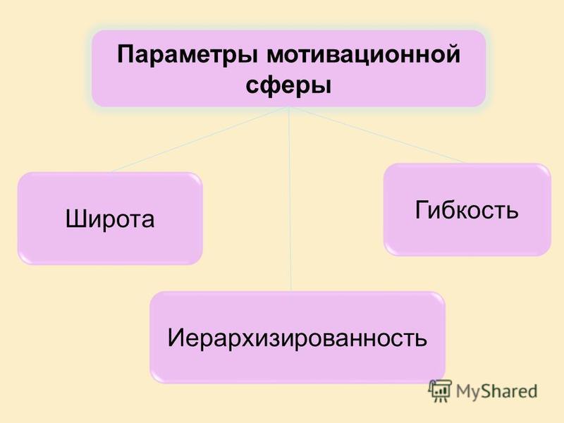Параметры мотивационной сферы Широта Гибкость Иерархизированность