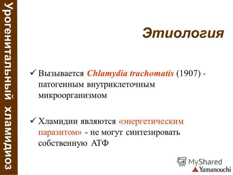 Урогенитальный хламидиоз Этиология Вызывается Chlamydia trachomatis (1907) - патогенным внутриклеточным микроорганизмом Хламидии являются «энергетическим паразитом» - не могут синтезировать собственную АТФ