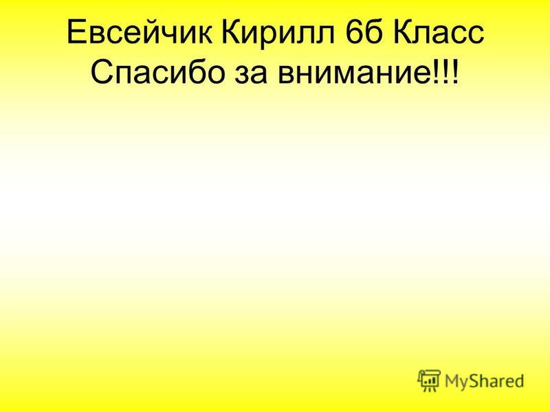 Евсейчик Кирилл 6 б Класс Спасибо за внимание!!!