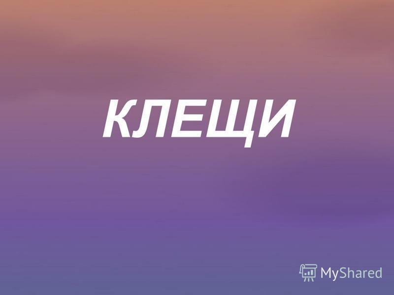 КЛЕЩИ
