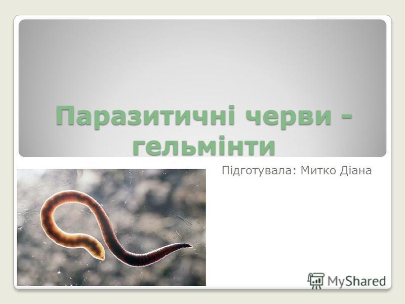 Паразитичні черви - гельмінти Підготувала: Митко Діана