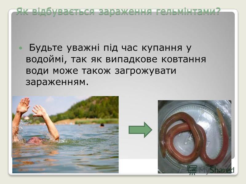 Як відбувається зараження гельмінтами? Будьте уважні під час купання у водоймі, так як випадкове ковтання води може також загрожувати зараженням.