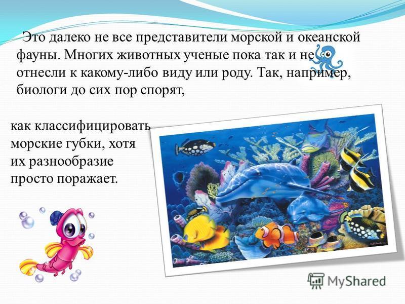 Это далеко не все представители морской и океанской фауны. Многих животных ученые пока так и не отнесли к какому-либо виду или роду. Так, например, биологи до сих пор спорят, как классифицировать морские губки, хотя их разнообразие просто поражает.