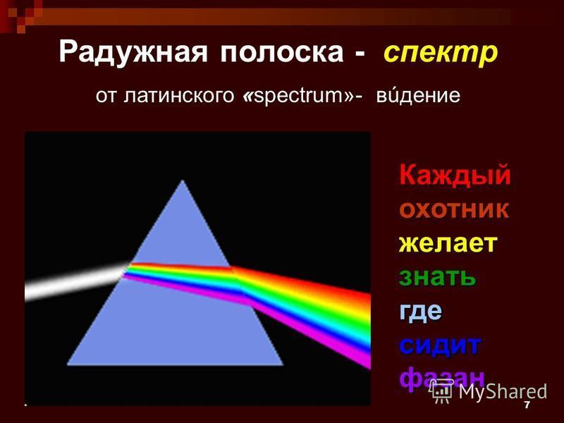 7 Радужная полоска - спектр от латинского «spectrum»- видение Каждый охотник желает знать где сидит фазан