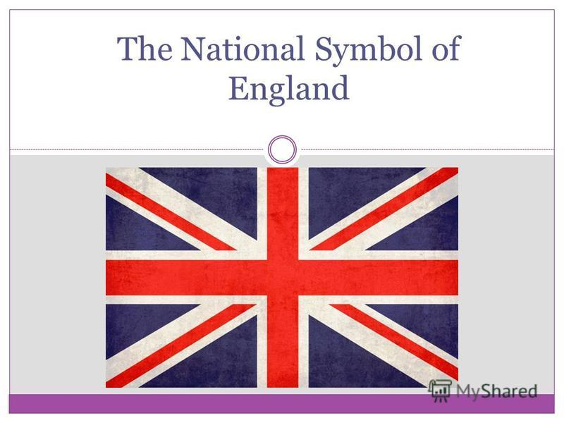 The National Symbol Of England The Red Rose