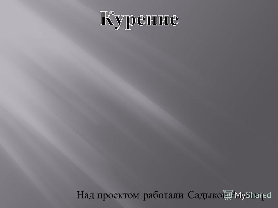 Над проектом работали Садыков Алишер
