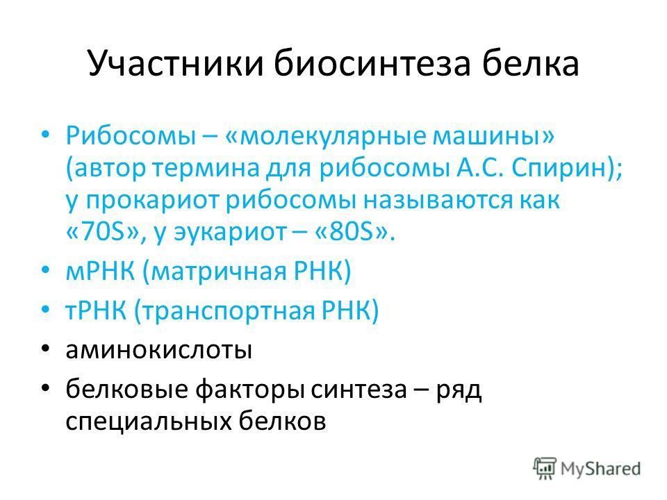 Участники биосинтеза белка Рибосомы – «молекулярные машины» (автор термина для рибосомы А.С. Спирин); у прокариот рибосомы называются как «70S», у эукариот – «80S». мРНК (матричная РНК) тРНК (транспортная РНК) аминокислоты белковые факторы синтеза –