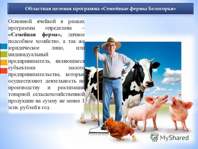 Основной ячейкой в рамках программы определена – «Семейная ферма», личное подсобное хозяйство, а так же юридическое лицо, или индивидуальный предприниматель, являющиеся субъектами малого предпринимательства, которые осуществляют деятельность по произ