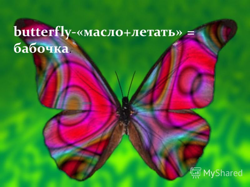 butterfly-«масло+летать» = бабочка.