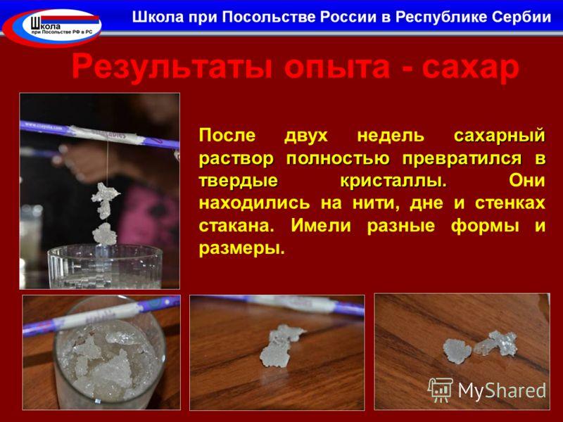 Результаты опыта - сахар сахарный раствор полностью превратился в твердые кристаллы. После двух недель сахарный раствор полностью превратился в твердые кристаллы. Они находились на нити, дне и стенках стакана. Имели разные формы и размеры.