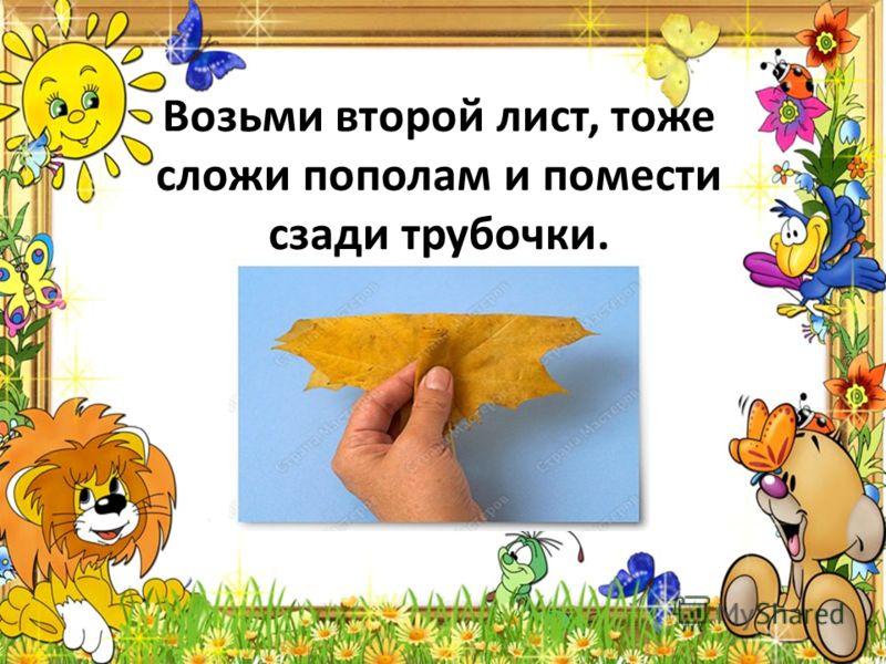 Возьми второй лист, тоже сложи пополам и помести сзади трубочки.