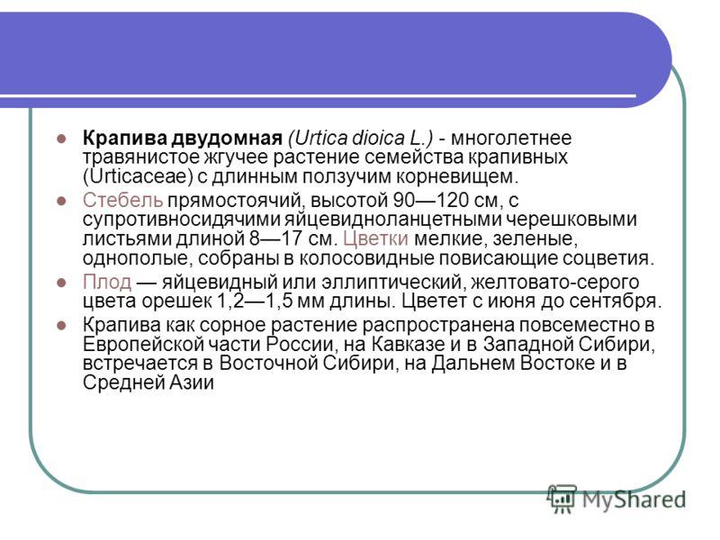 Крапива двудомная (Urtica dioica L.) - многолетнее травянистое жгучее растение семейства крапивных (Urtiсасеае) с длинным ползучим корневищем. Стебель прямостоячий, высотой 90120 см, с супротивносидячими яйцевидноланцетными черешковыми листьями длино