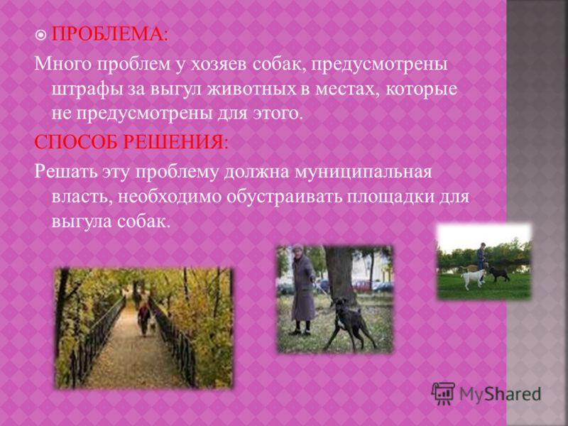 ПРОБЛЕМА: Много проблем у хозяев собак, предусмотрены штрафы за выгул животных в местах, которые не предусмотрены для этого. СПОСОБ РЕШЕНИЯ: Решать эту проблему должна муниципальная власть, необходимо обустраивать площадки для выгула собак.