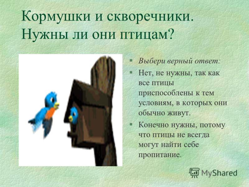 Ответ на вопрос: «Что страшнее для птиц - голод или холод?» §Перьевой покров - надёжная защита птиц от холода, поэтому птицам не так страшен холод, как голод. §Птицы, которые питаются насекомыми в воздухе, улетают на юг, так как зимой насекомых в воз