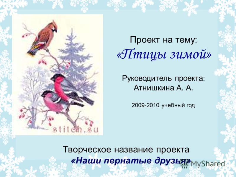 Проект на тему: «Птицы зимой» Руководитель проекта: Атнишкина А. А. 2009-2010 учебный год Творческое название проекта «Наши пернатые друзья»