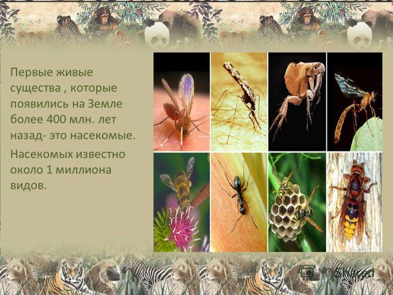 Первые живые существа, которые появились на Земле более 400 млн. лет назад- это насекомые. Насекомых известно около 1 миллиона видов.
