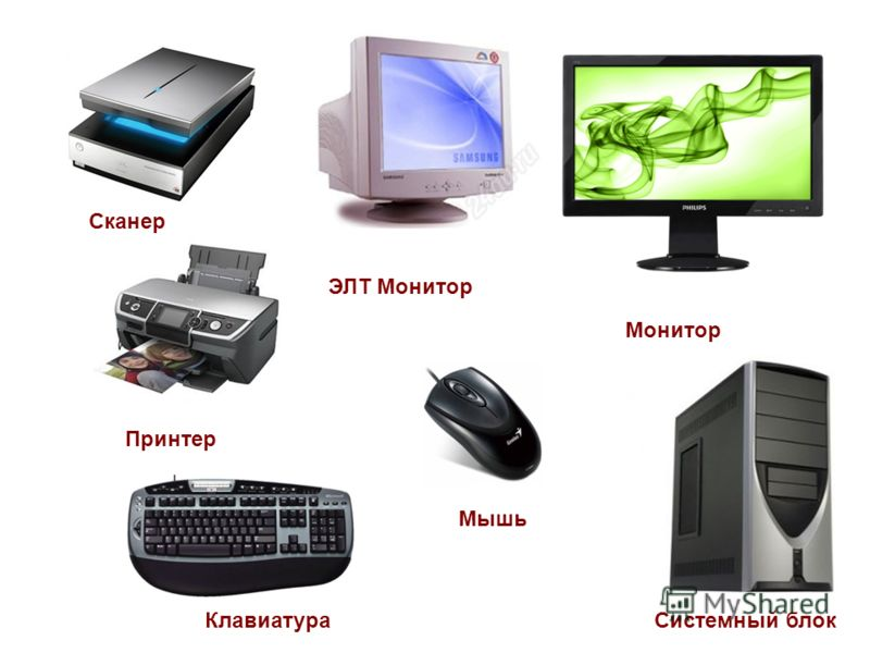 Системный блок Монитор Клавиатура Сканер Принтер Мышь ЭЛТ Монитор