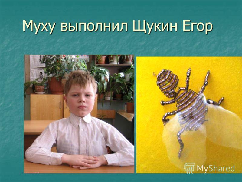 Муху выполнил Щукин Егор