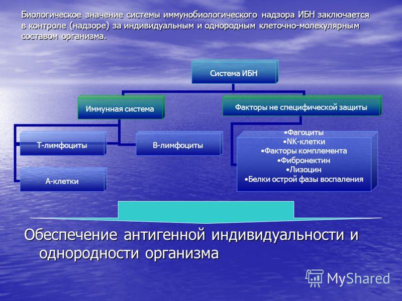 Биологическое значение системы иммунобиологического надзора ИБН заключается в контроле (надзоре) за индивидуальным и однородным клеточно молекулярным составом организма. Система ИБН Иммунная система Т-лимфоцитыВ-лимфоциты А-клетки Факторы не специфич