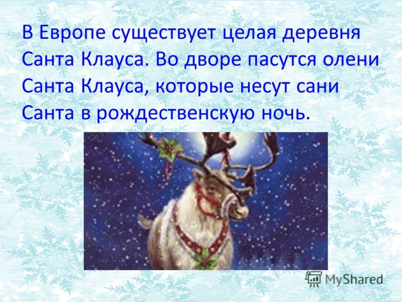 В Европе существует целая деревня Санта Клауса. Во дворе пасутся олени Санта Клауса, которые несут сани Санта в рождественскую ночь.