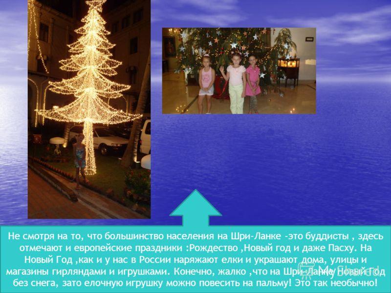 Не смотря на то, что большинство населения на Шри-Ланке -это буд д и ст ы, здесь отмечают и европейские праздники :Рождество,Новый год и даже Пасху. На Новый Год,как и у нас в России наряжают елки и украшают дома, улицы и магазины гирляндами и игрушк