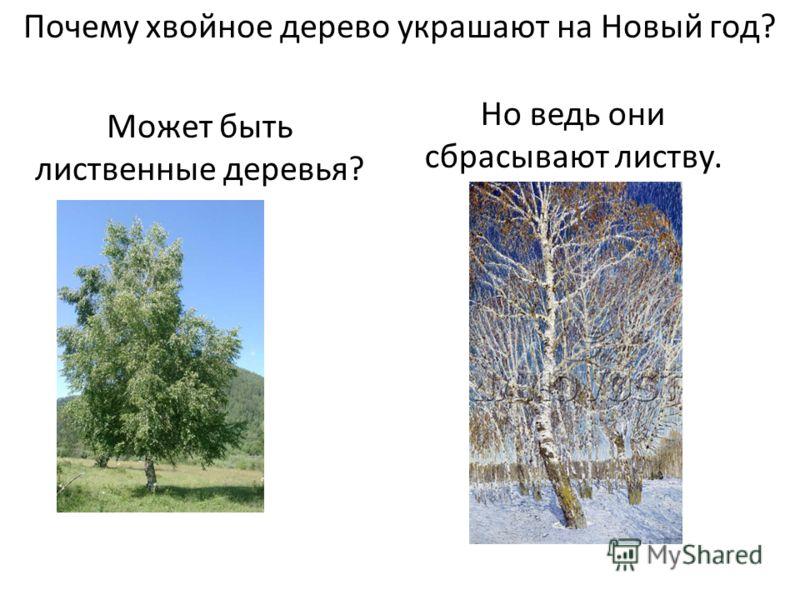Почему хвойное дерево украшают на Новый год? Может быть лиственные деревья? Но ведь они сбрасывают листву.