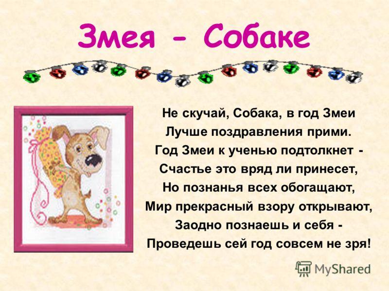 Змея - Собаке Не скучай, Собака, в год Змеи Лучше поздравления прими. Год Змеи к ученью подтолкнет - Счастье это вряд ли принесет, Но познанья всех обогащают, Мир прекрасный взору открывают, Заодно познаешь и себя - Проведешь сей год совсем не зря!