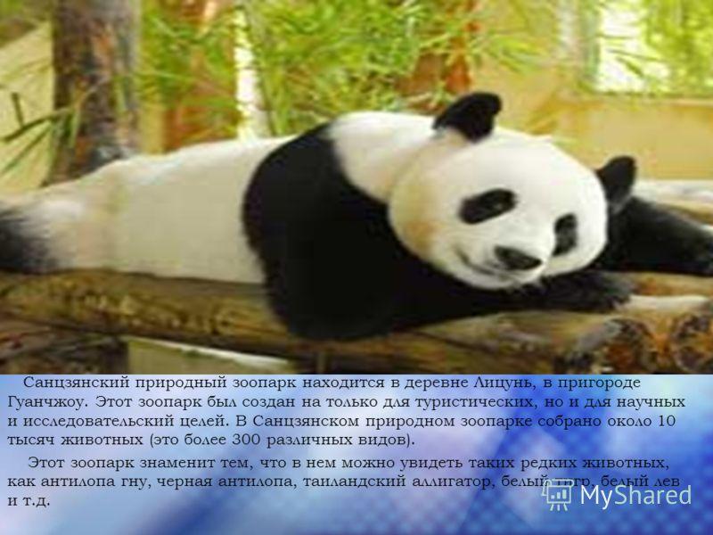 Санцзянский природный зоопарк находится в деревне Лицунь, в пригороде Гуанчжоу. Этот зоопарк был создан на только для туристических, но и для научных и исследовательский целей. В Санцзянском природном зоопарке собрано около 10 тысяч животных (это бол