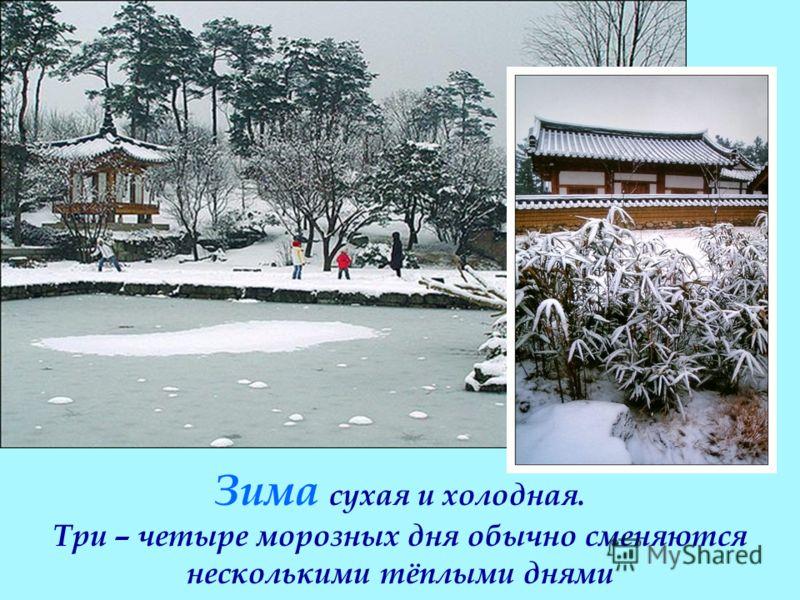 В стране чётко прослеживаются четыре времени года Зима сухая и холодная. Три – четыре морозных дня обычно сменяются несколькими тёплыми днями