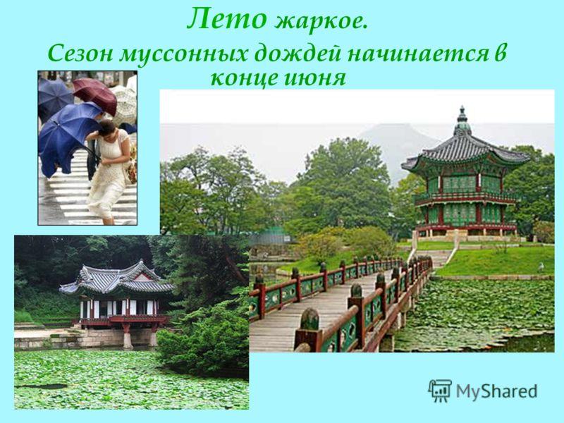 Лето жаркое. Сезон муссонных дождей начинается в конце июня